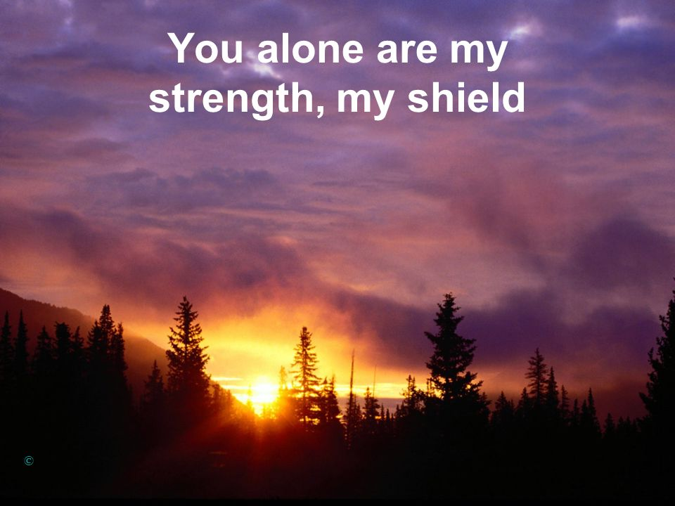 You alone are my strength, my shield ©