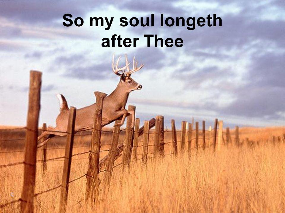 So my soul longeth after Thee ©