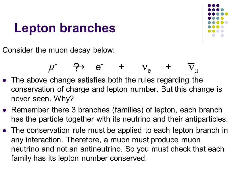 Lepton branches Consider the muon decay below: μ - e - + ν e + ν μ The above change satisfies both the rules regarding the conservation of charge and