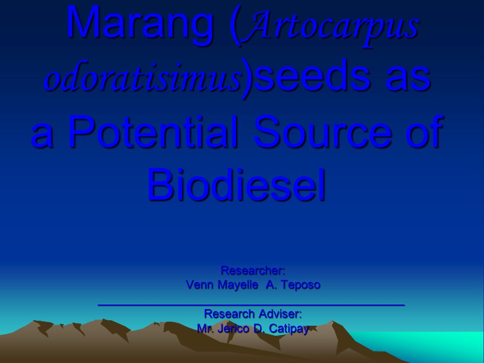 Marang ( Artocarpus odoratisimus )seeds as a Potential Source of Biodiesel Marang ( Artocarpus odoratisimus )seeds as a Potential Source of Biodiesel