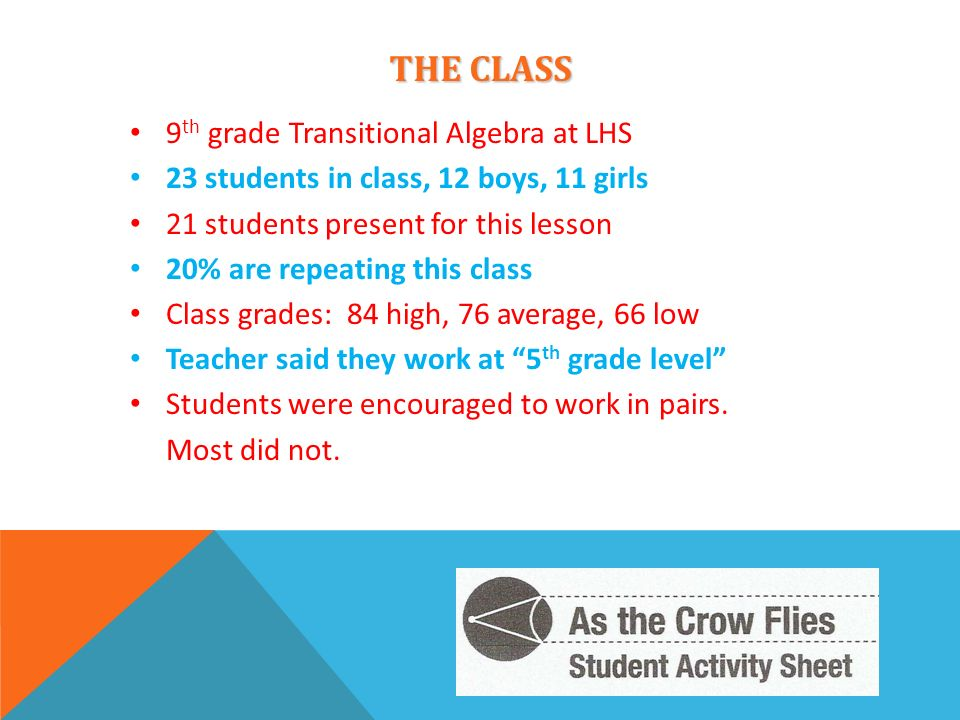 THE CLASS 9 th grade Transitional Algebra at LHS 23 students in class, 12 boys, 11 girls 21 students present for this lesson 20% are repeating this cl