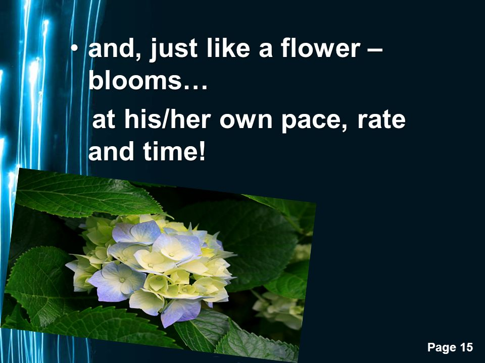 Page 15 and, just like a flower – blooms…and, just like a flower – blooms… at his/her own pace, rate and time.