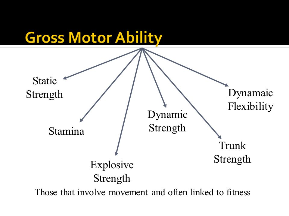 Explosive Strength Static Strength Stamina Dynamic Strength Trunk Strength Dynamaic Flexibility Those that involve movement and often linked to fitnes