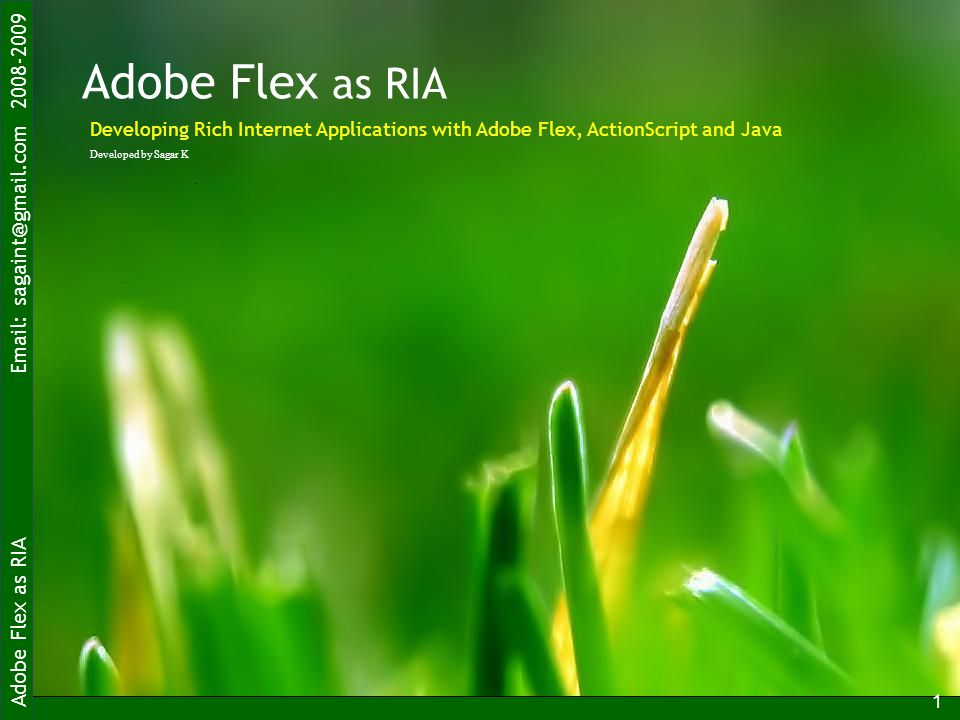 Adobe Flex as RIA Email: sagaint@gmail.com 2008-2009 1 Adobe Flex as RIA Developed by Sagar K Developing Rich Internet Applications with Adobe Flex, A