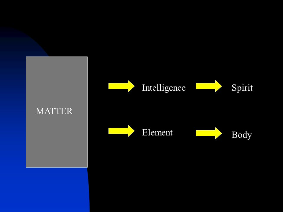 MATTER Intelligence Body Element Spirit