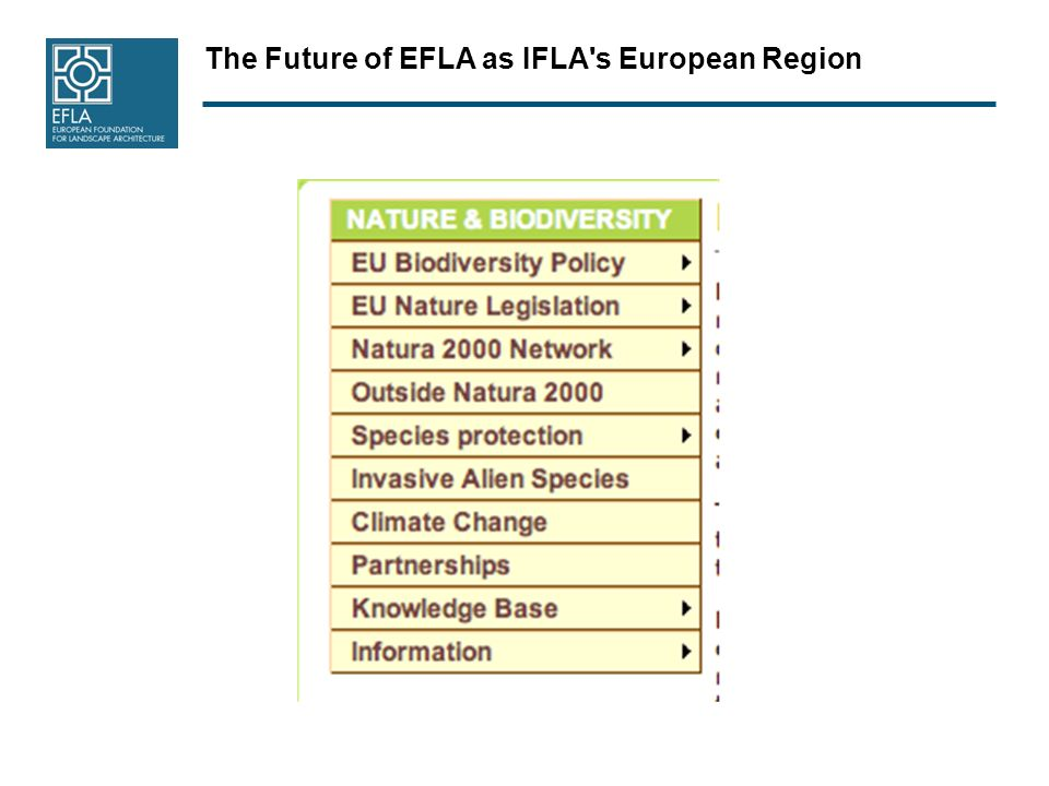 The Future of EFLA as IFLA s European Region EFLA – IFLA History The coming together of EFLA and IFLA started in Prague 2004 and was set in action 1.1.2007.