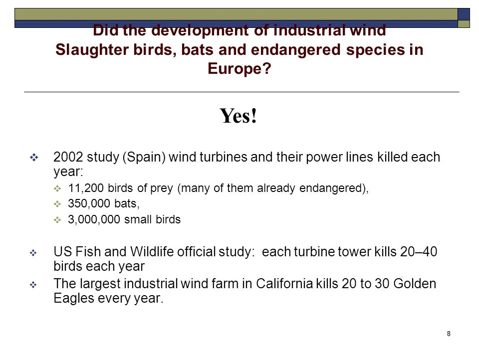 8 8 Did the development of industrial wind Slaughter birds, bats and endangered species in Europe.
