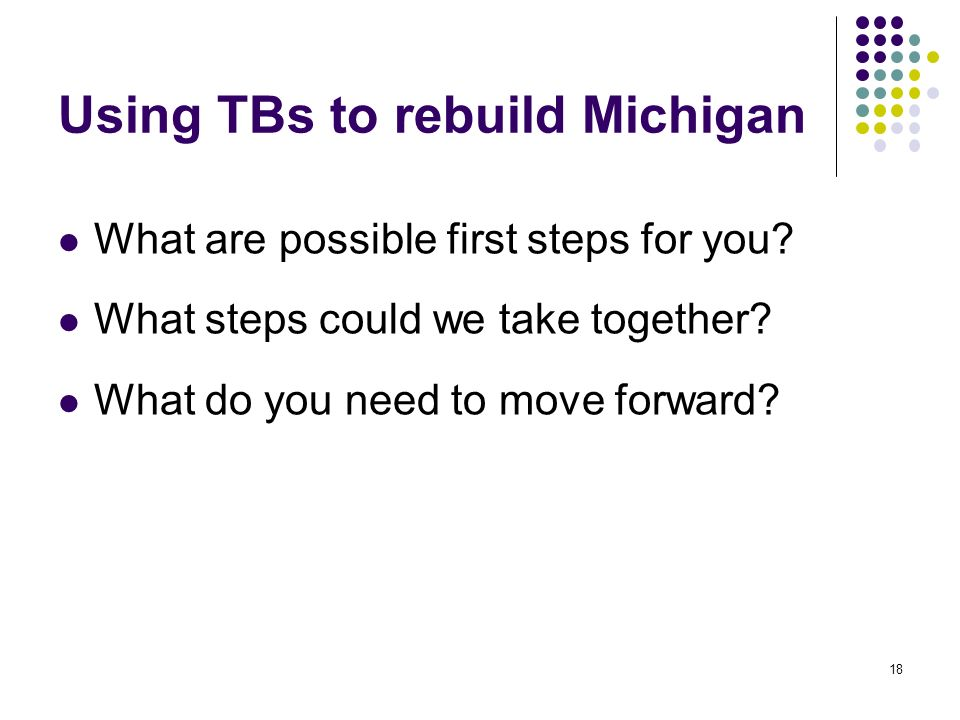 Using TBs to rebuild Michigan What are possible first steps for you.