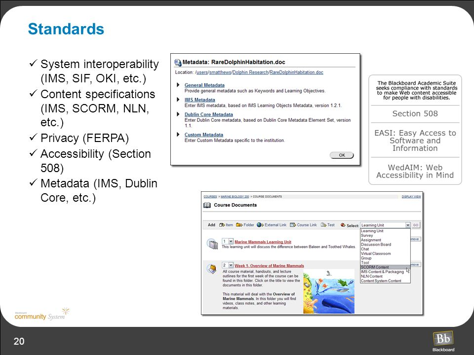 20 Standards System interoperability (IMS, SIF, OKI, etc.) Content specifications (IMS, SCORM, NLN, etc.) Privacy (FERPA) Accessibility (Section 508) Metadata (IMS, Dublin Core, etc.)
