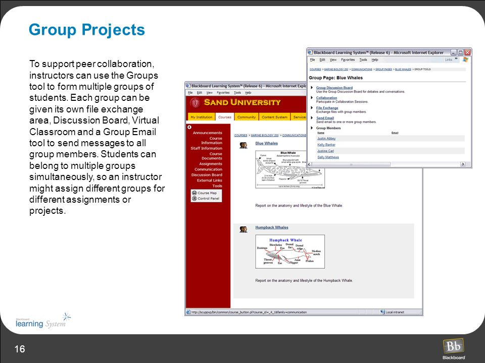 16 Group Projects To support peer collaboration, instructors can use the Groups tool to form multiple groups of students.