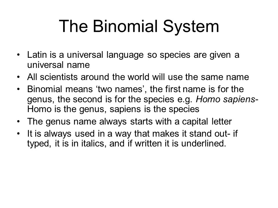 The Binomial System Latin is a universal language so species are given a universal name All scientists around the world will use the same name Binomia