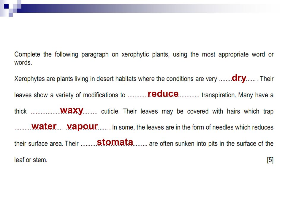 dry reduce waxy water vapour stomata