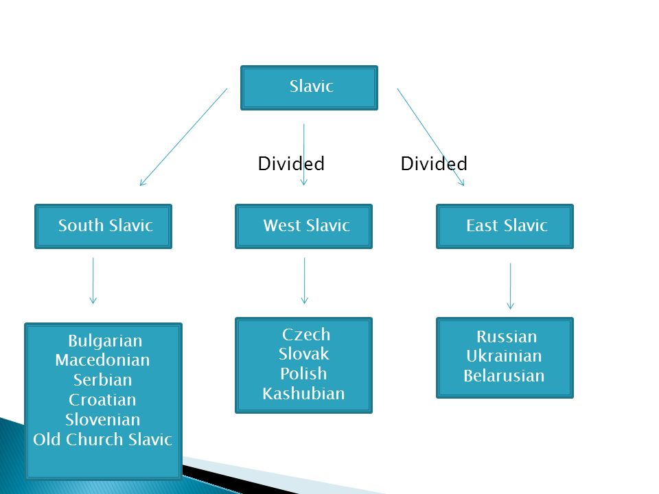 Divided Divided Slavic South Slavic West Slavic East Slavic Russian Ukrainian Belarusian Czech Slovak Polish Kashubian Bulgarian Macedonian Serbian Croatian Slovenian Old Church Slavic