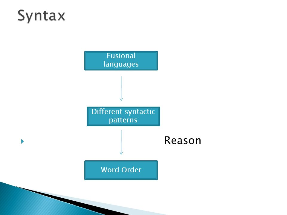 Reason Fusional languages Different syntactic patterns Word Order