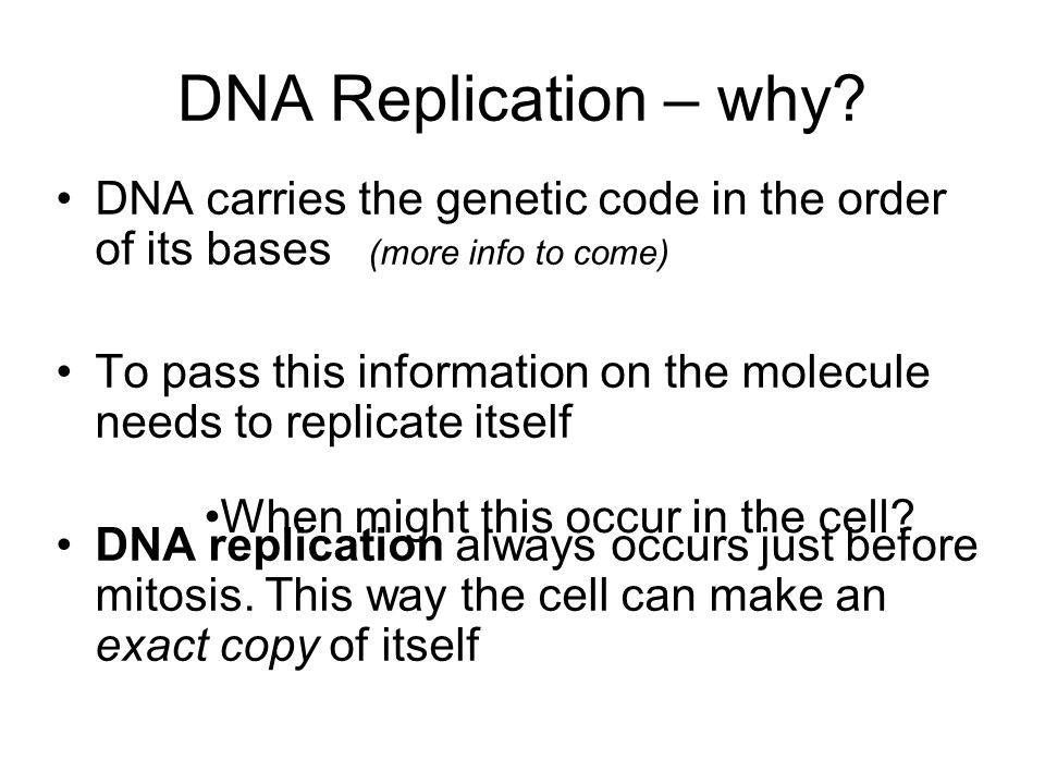 DNA Replication – why? DNA carries the genetic code in the order of its bases (more info to come) To pass this information on the molecule needs to re