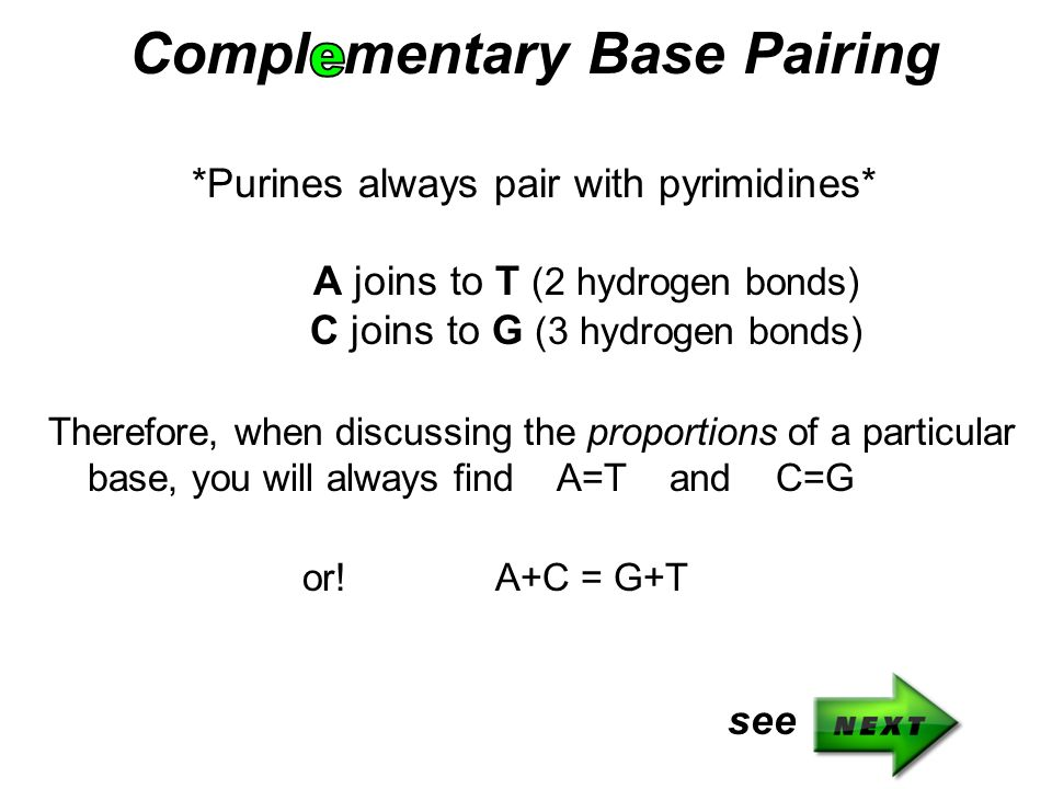 Compl mentary Base Pairing *Purines always pair with pyrimidines* A joins to T (2 hydrogen bonds) C joins to G (3 hydrogen bonds) Therefore, when disc