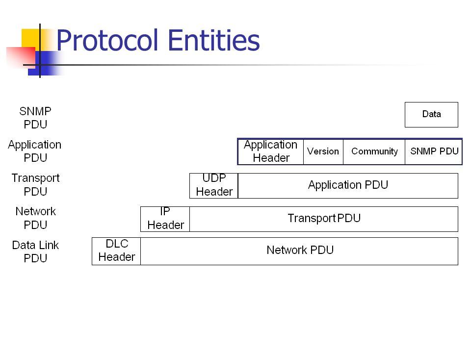 Protocol Entities