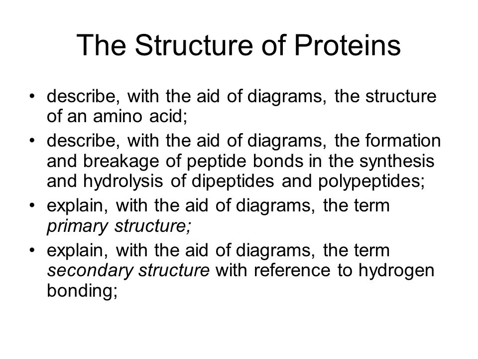 The Structure of Proteins describe, with the aid of diagrams, the structure of an amino acid; describe, with the aid of diagrams, the formation and br
