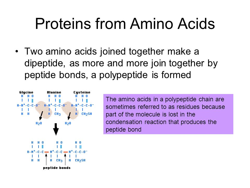 Heating Proteins Heating a protein increases the kinetic energy in the molecule This causes the molecule to vibrate, breaking the bonds