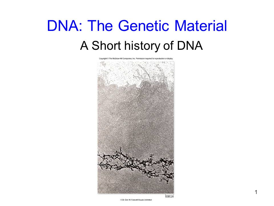 1 DNA: The Genetic Material A Short history of DNA