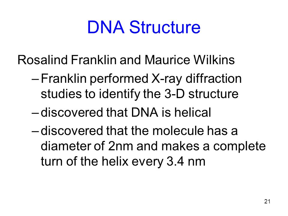 21 DNA Structure Rosalind Franklin and Maurice Wilkins –Franklin performed X-ray diffraction studies to identify the 3-D structure –discovered that DN