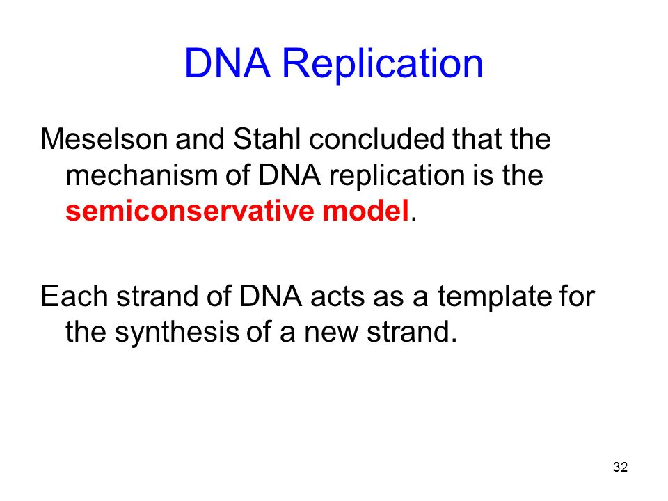32 DNA Replication Meselson and Stahl concluded that the mechanism of DNA replication is the semiconservative model. Each strand of DNA acts as a temp