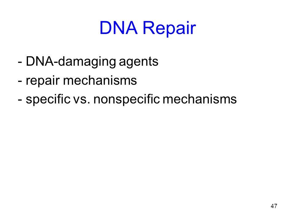 47 DNA Repair - DNA-damaging agents - repair mechanisms - specific vs. nonspecific mechanisms