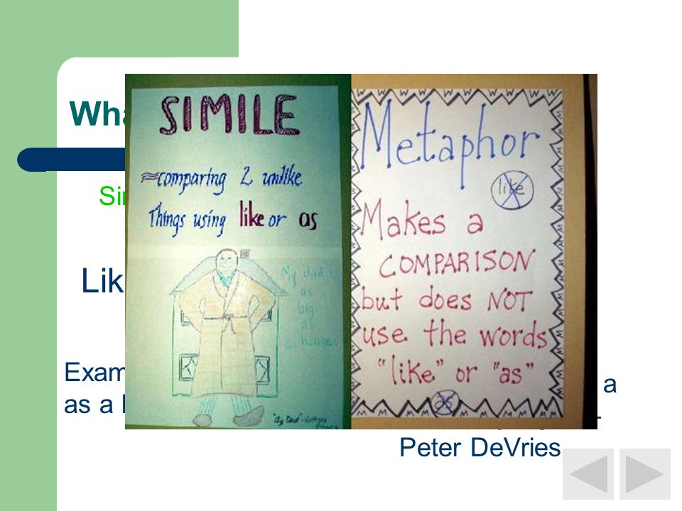Whats the difference?? Simile Metaphor Like or As Example: Snug as a bug in a rug. Example: Life is a zoo in a jungle – Peter DeVries