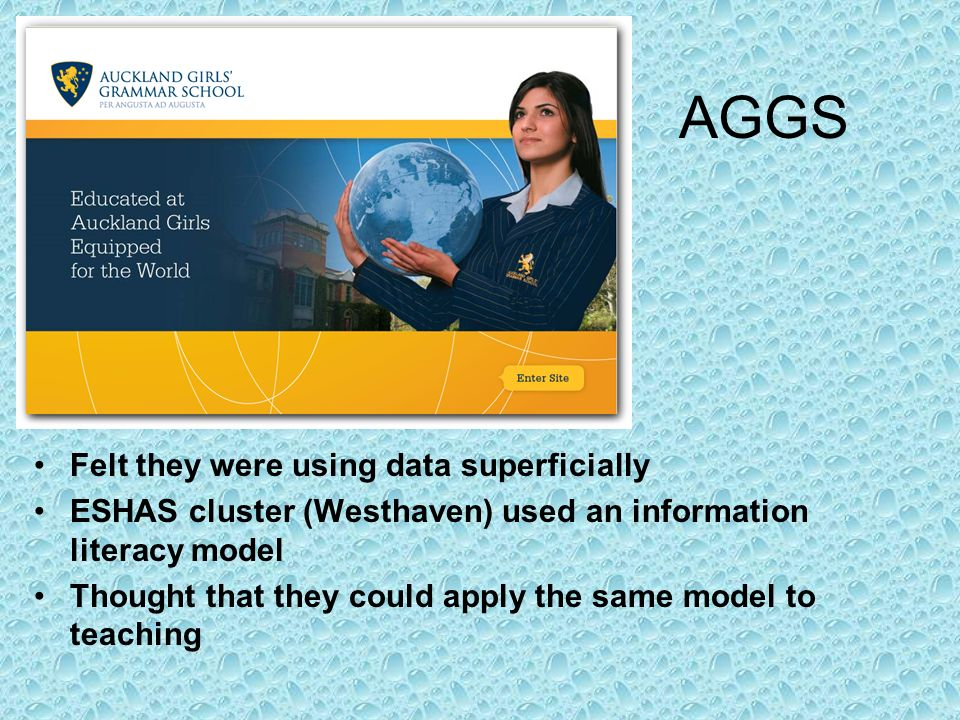 AGGS Felt they were using data superficially ESHAS cluster (Westhaven) used an information literacy model Thought that they could apply the same model
