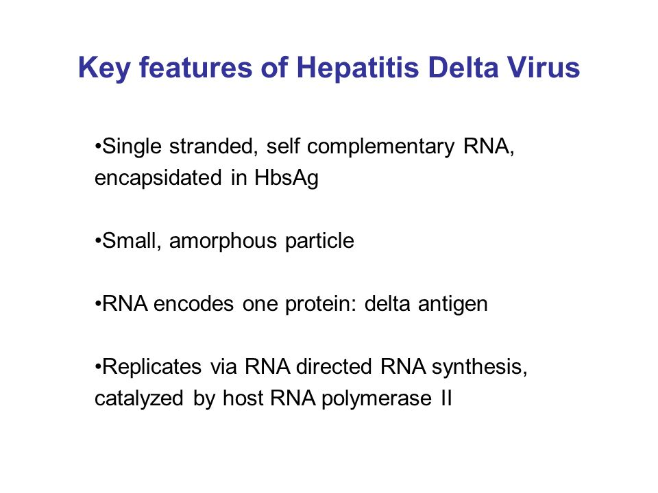 Key features of Hepatitis Delta Virus Single stranded, self complementary RNA, encapsidated in HbsAg Small, amorphous particle RNA encodes one protein