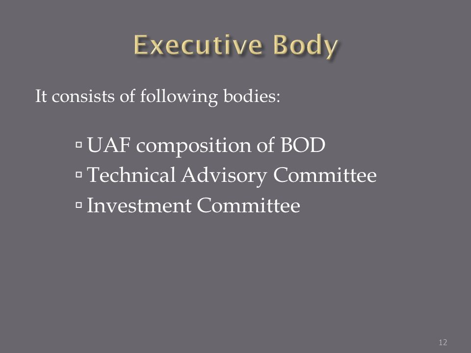 It consists of following bodies: UAF composition of BOD Technical Advisory Committee Investment Committee 12