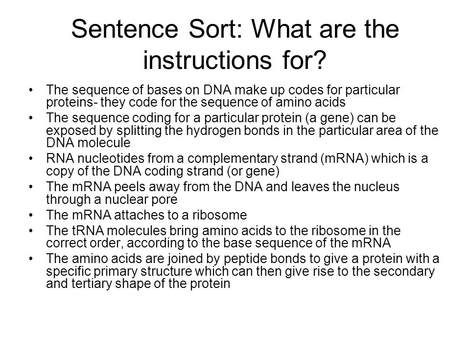 Sentence Sort: What are the instructions for? The sequence of bases on DNA make up codes for particular proteins- they code for the sequence of amino