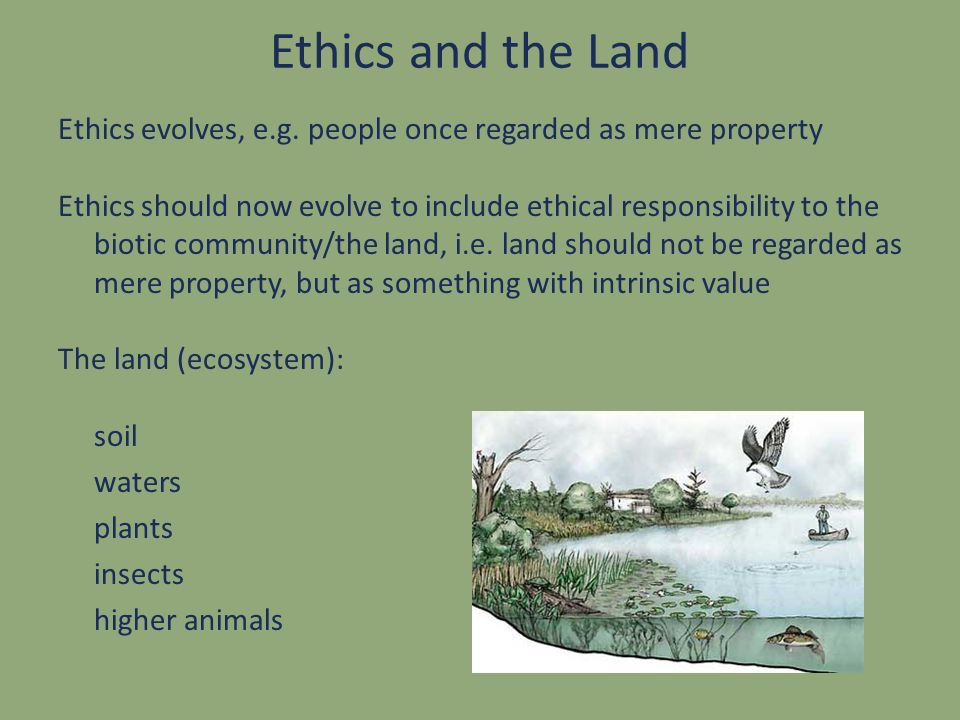 Ethics and the Land Ethics evolves, e.g. people once regarded as mere property Ethics should now evolve to include ethical responsibility to the bioti