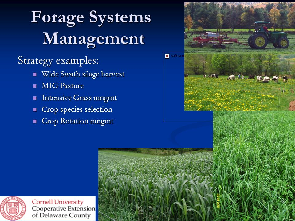 Forage Systems Management Strategy examples: Wide Swath silage harvest Wide Swath silage harvest MIG Pasture MIG Pasture Intensive Grass mngmt Intensi