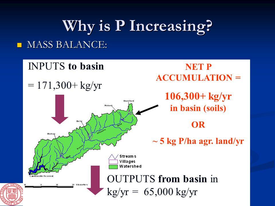 Why is P Increasing? MASS BALANCE: MASS BALANCE: INPUTS to basin = 171,300+ kg/yr NET P ACCUMULATION = 106,300+ kg/yr in basin (soils) OR ~ 5 kg P/ha