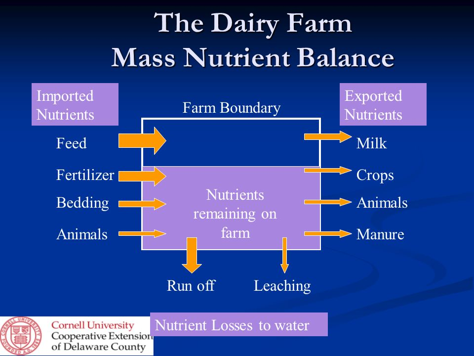 The Dairy Farm Mass Nutrient Balance Feed Fertilizer Bedding Animals Imported Nutrients Exported Nutrients Crops Milk Animals Manure LeachingRun off N