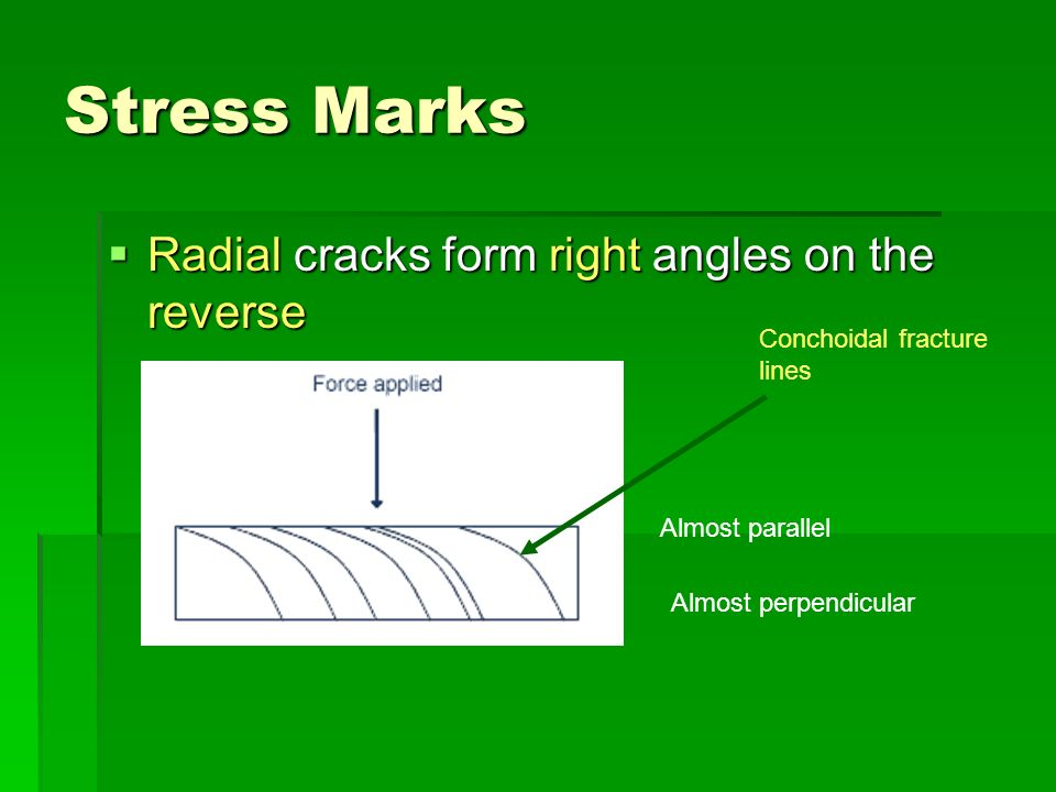 Stress Marks Radial cracks form right angles on the reverse Radial cracks form right angles on the reverse Almost parallel Almost perpendicular Concho