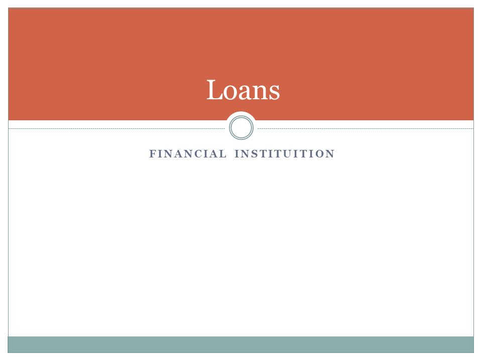 FINANCIAL INSTITUITION Loans
