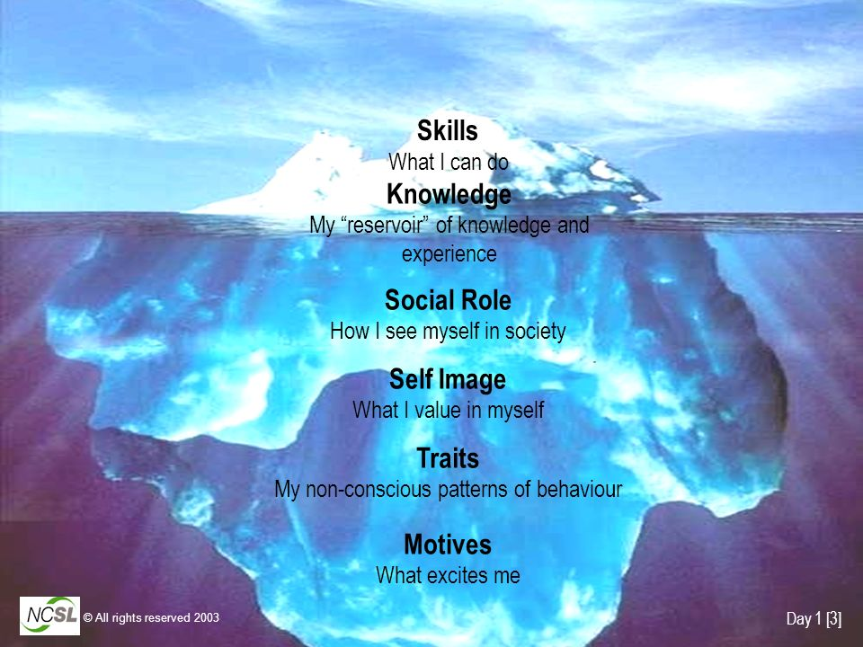 Traits My non-conscious patterns of behaviour Self Image What I value in myself Social Role How I see myself in society Skills What I can do Knowledge My reservoir of knowledge and experience Motives What excites me Day 1 [3] © All rights reserved 2003