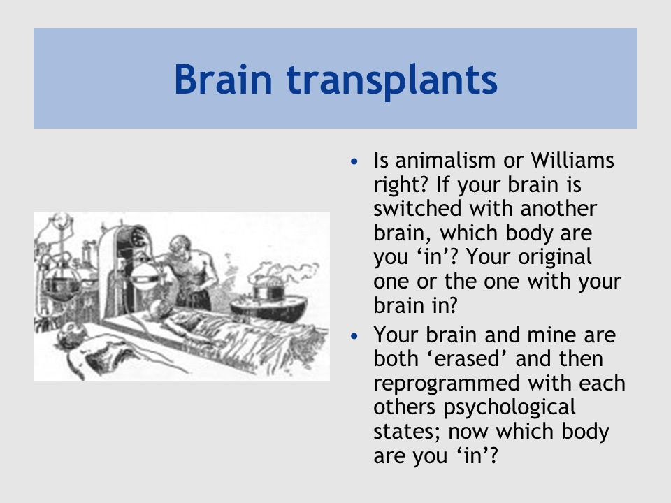 Brain transplants Is animalism or Williams right.