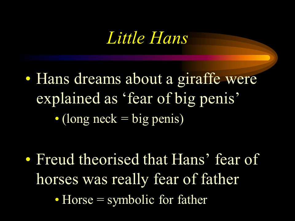 Little Hans Freud & father try to make sense of what Hans was experiencing and to resolve his phobia of horses Freud noted that Hans fear of horses de