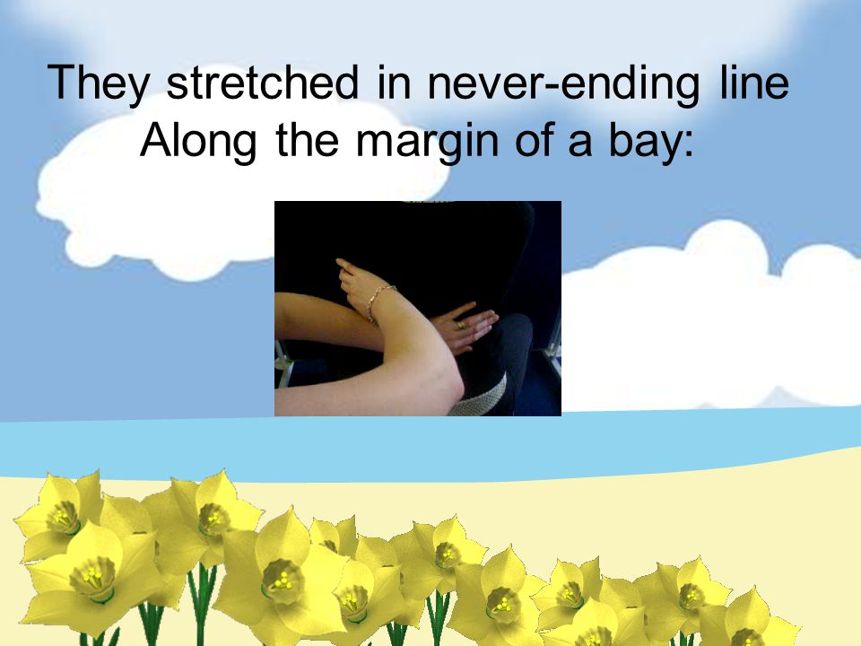 They stretched in never-ending line Along the margin of a bay: