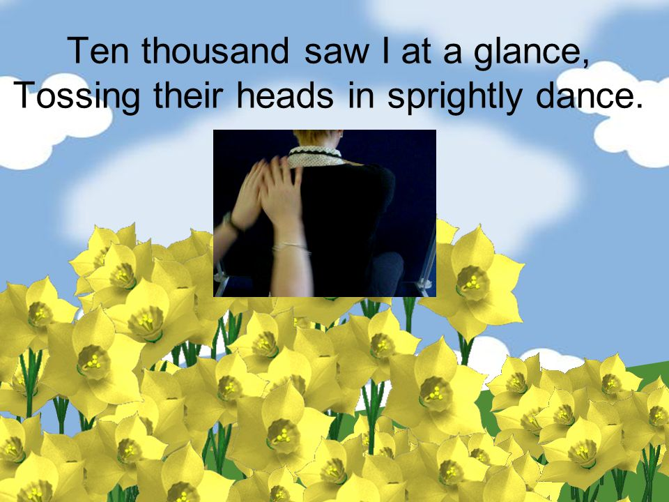 Ten thousand saw I at a glance, Tossing their heads in sprightly dance.