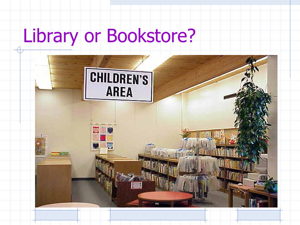 Library or Bookstore