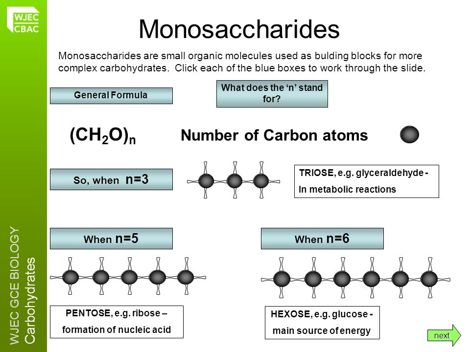 WJEC GCE BIOLOGY Carbohydrates (CH 2 O) n Monosaccharides Monosaccharides are small organic molecules used as bulding blocks for more complex carbohyd