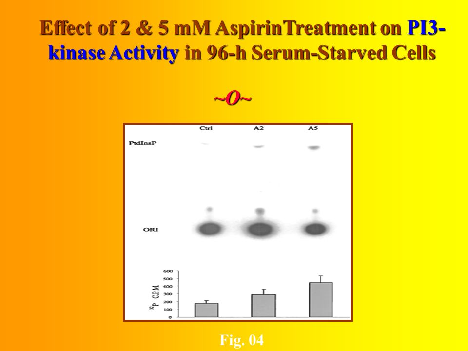 Effect of 2 & 5 mM Aspirin Treatment on (Ser 437) Phosphorylated AKT & Total AKT ~O~ Fig. 03