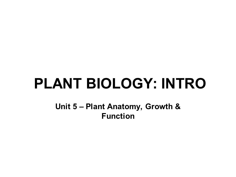 PLANT BIOLOGY: INTRO Unit 5 – Plant Anatomy, Growth & Function