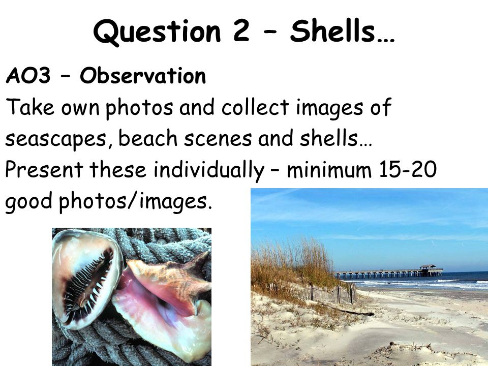Question 2 – Shells… AO3 – Observation Take own photos and collect images of seascapes, beach scenes and shells… Present these individually – minimum good photos/images.