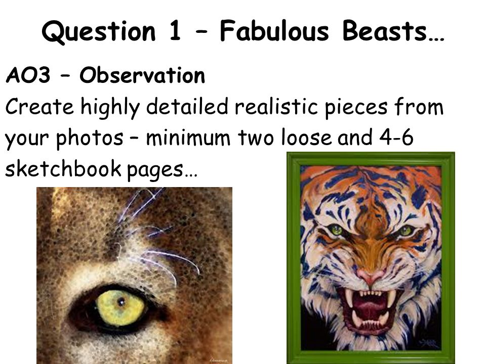 Question 1 – Fabulous Beasts… AO2 – Context (artist research) Create double page research pages in your book on AT LEAST two relevant artists.