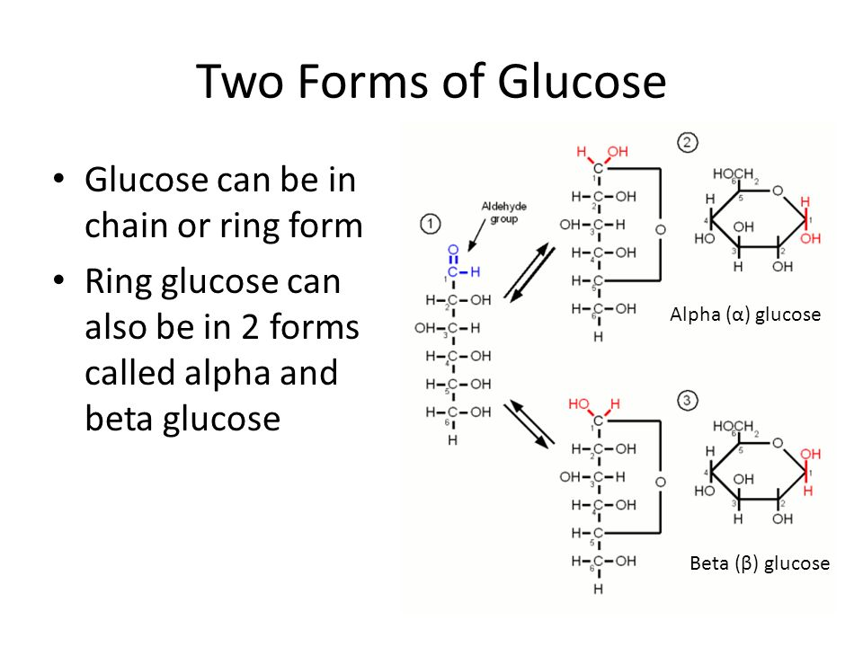 Two Forms of Glucose Glucose can be in chain or ring form Ring glucose can also be in 2 forms called alpha and beta glucose Alpha (α) glucose Beta (β)